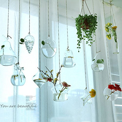 Ivolador Terrarium Container Flower Planter Hanging Glass for Hydroponic Plants Home Garden Decor -3 Type