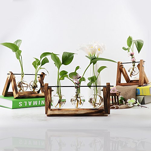 Takefuns Hydroponic Vase Glass Planter Bulb Vase Desktop Glass Planter Vase with Retro Wooden Stand Propagation Stations for Hydroponics Plants Office Desk Wedding Decor