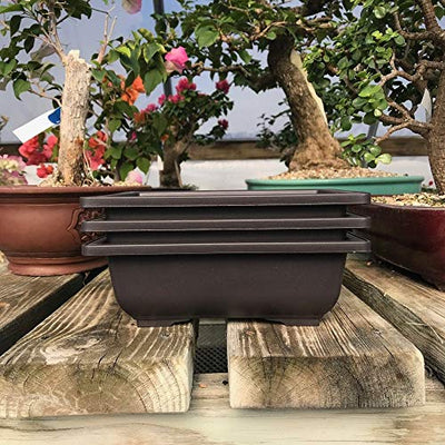 "3 Pack of 8"" Bonsai Training Pots 