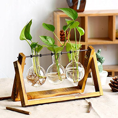 Plant Terrarium with Wooden Stand, Air Planter Bulb Glass Vase Metal Swivel Holder Retro Tabletop for Hydroponics Home Garden Office Decoration - 3 Bulb Vase (Plant Terrarium)