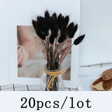 Bulrush Natural Dried Flowers Artificial Plants Branch Colorful