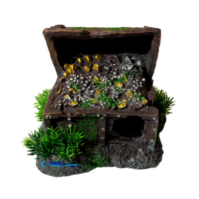 Treasure Chest With Moss - RBM Aquatics