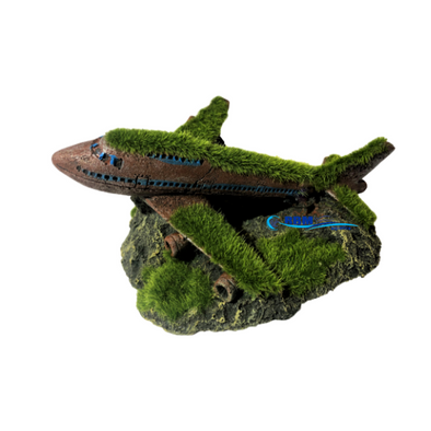 Plane With Moss - RBM Aquatics