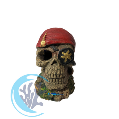 Pirate Skeleton / Bandana - RBM Aquatics