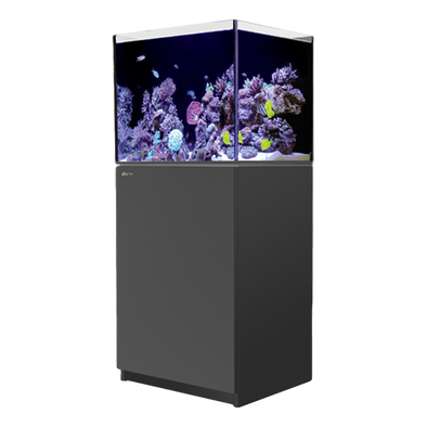 Red Sea REEFER 170 Complete System - Black - RBM Aquatics