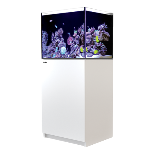 Red Sea Reefer 170 Complete System - White - RBM Aquatics
