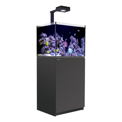 Red Sea Reefer 170 Deluxe (incl.ReefLED 90) - Black - RBM Aquatics