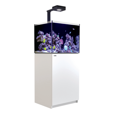 Red Sea Reefer 170 Deluxe (incl.ReefLED 90) - White - RBM Aquatics
