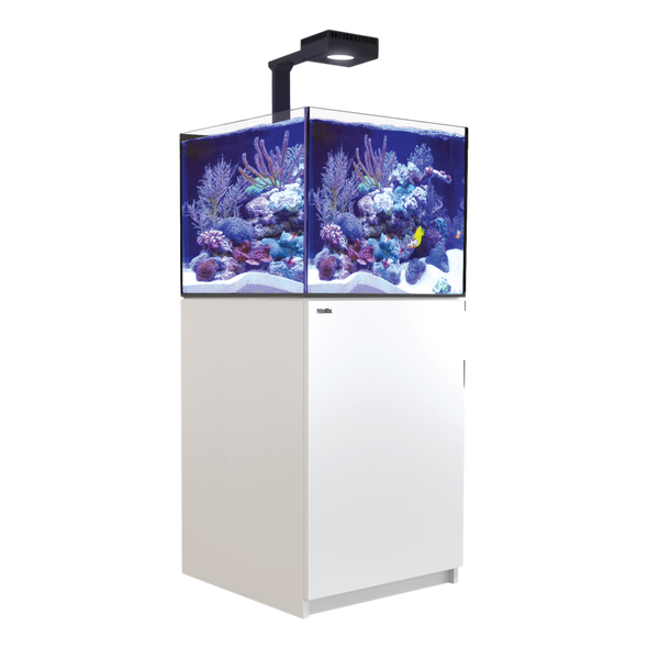Reefer XL200 Deluxe Complete System - White - RBM Aquatics