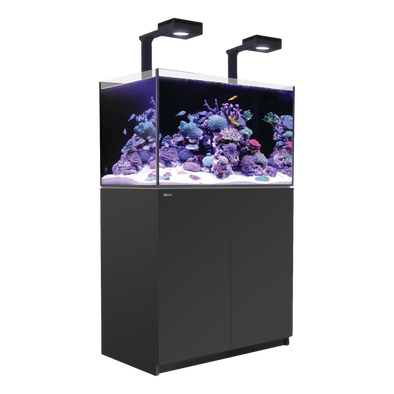 Reefer 250 Deluxe (incl. 2 XReefLED 90) - Black - RBM Aquatics