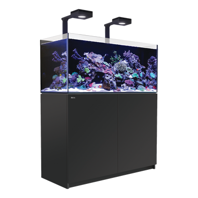Red Sea Reefer 350 Deluxe (incl. 2 XReefLED 90) - Black - RBM Aquatics