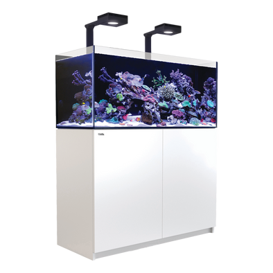 Red Sea Reefer 350 Deluxe (incl. 2 XReefLED 90) - White - RBM Aquatics