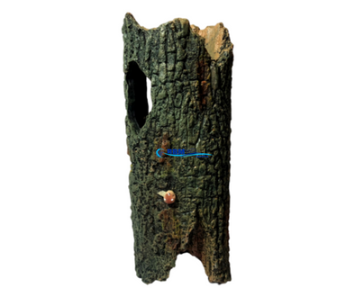 Hollow Tree Trunk - RBM Aquatics