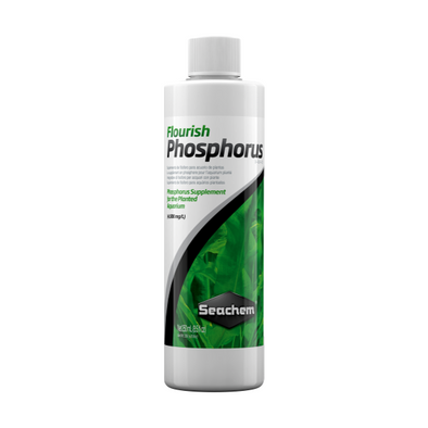 Seachem Flourish Phosphorus 250Ml - RBM Aquatics