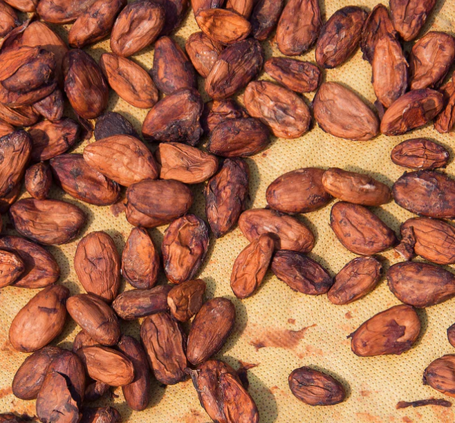 Cacao vs. Cocoa? What's the Difference?