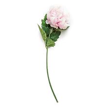 Load image into Gallery viewer, Faux Flower Stem - Rouge Peony