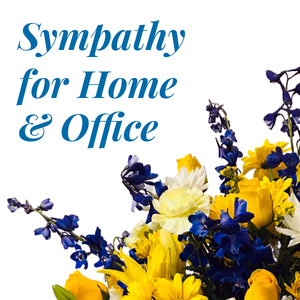 Sympathy For The Home Or Office
