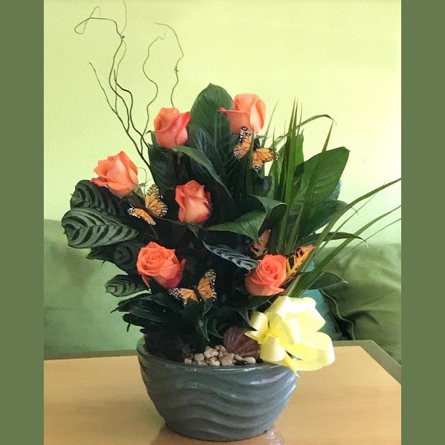 Flower Delivery Florist Funeral Sympathy Naples Butterfly Garden