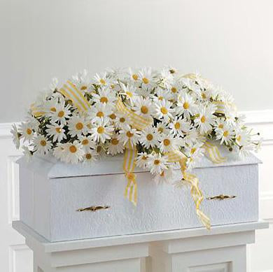 Flower Delivery Florist Funeral Sympathy Naples Humble Daisy Infant Casket Spray