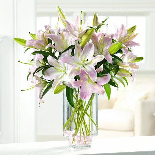 Flower Delivery Florist Funeral Sympathy Naples Lily Luster