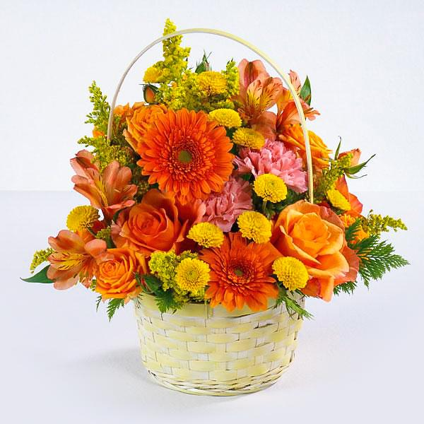 Flower Delivery Florist Funeral Sympathy Naples Naples Sunrise Surprise