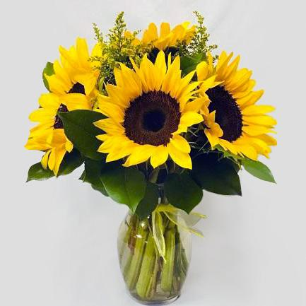 Flower Delivery Florist Funeral Sympathy Naples Radiant Sunny Days