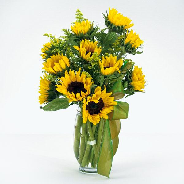 Flower Delivery Florist Funeral Sympathy Naples Sunny Day Sunflowers