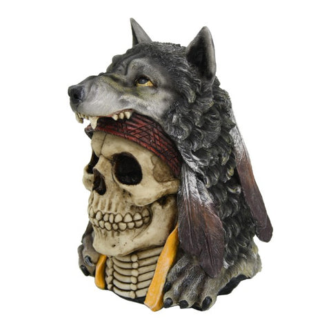 Indian Wolf Skull