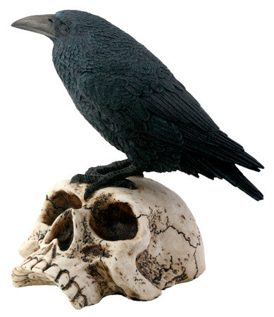 Raven on Skull - Highway Thirty One