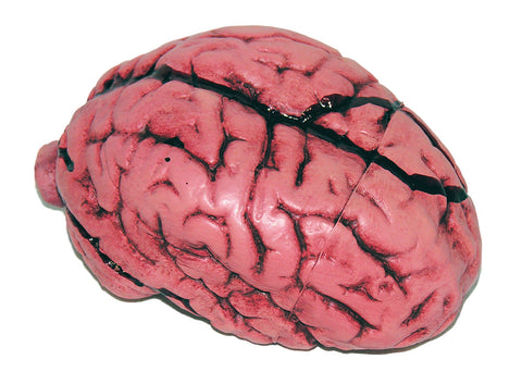 Latex Brain Halloween Decor