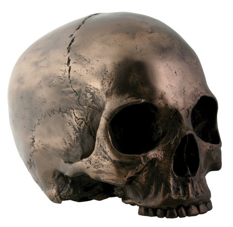 Bronze Skull Head - Highway Thirty One