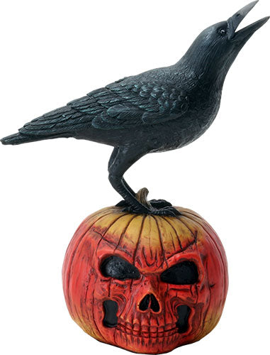 Raven on Pumpkin