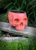 Sunrise Skull Planter