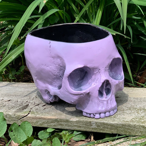 Skull Planter - Gum Drop
