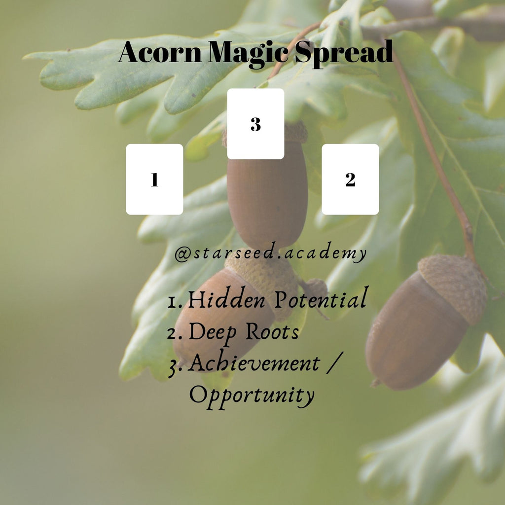 Acorn Magic Tarot Spread