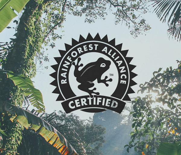 Rainforest Alliance Certified image with logo among green foliage