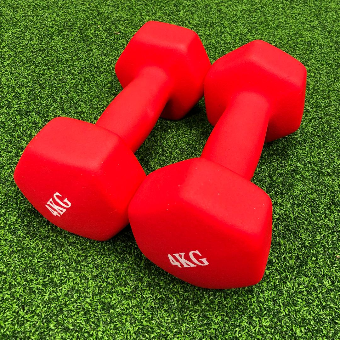 (Instock) Light Weight Mini Dumbbell Female Dumbbells - Dumbbell | Gym51