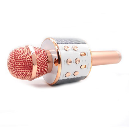 Wireless Microphone Hifi Speaker