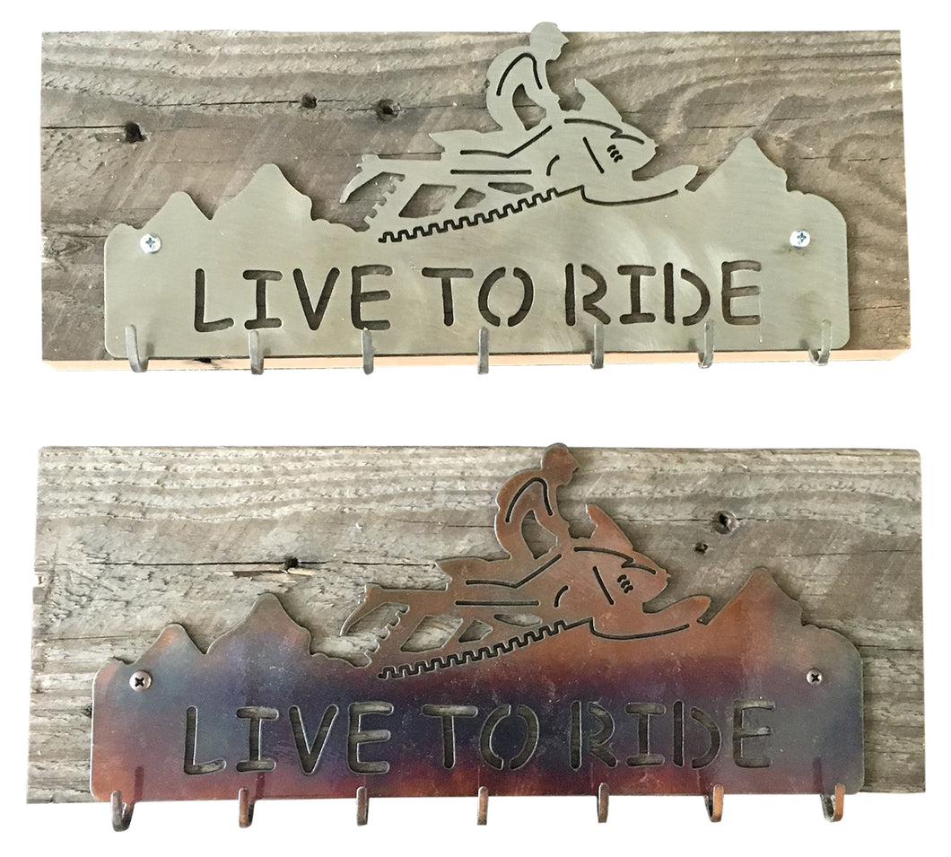 Backcountry Sled Patriots Metal artwork Key Hanger