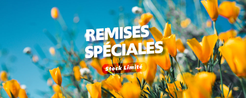 REMISE SPECIAL