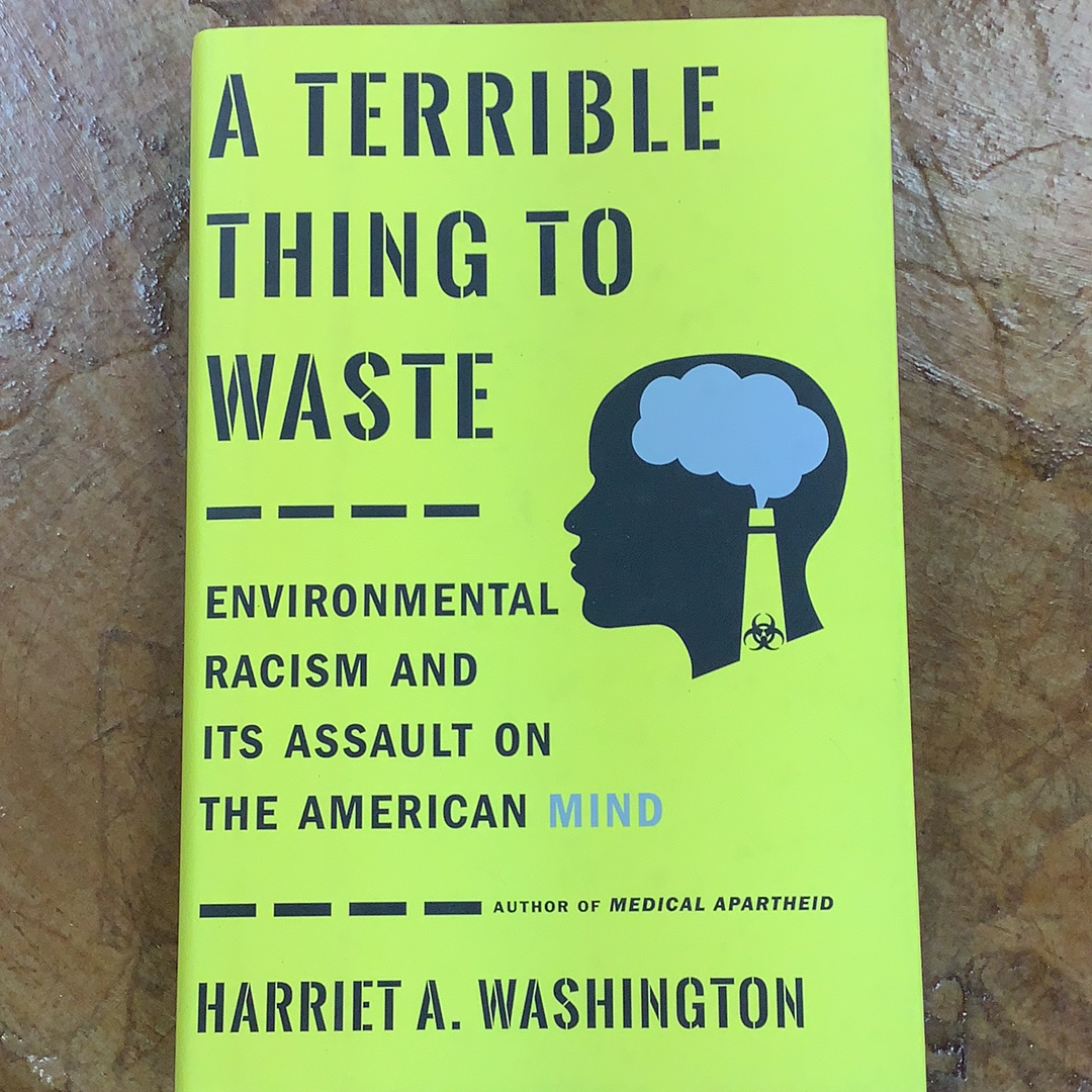 A Terrible Thing to Waste: Environmental Racism and Its Assault on the American Mind