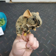 Load image into Gallery viewer, Mini Field Mouse