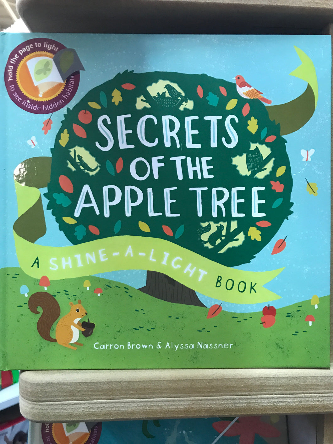 Secrets of the Apple Tree - A Shine a Light Book