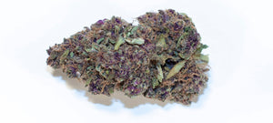 Legendary Hemp Flower 25% C BD - Bellacanna