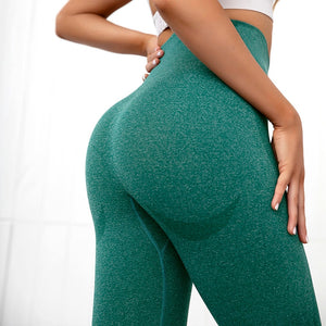 Athena Seamless Leggings
