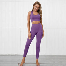 Load image into Gallery viewer, Athena Seamless Set (Leggings + Top)