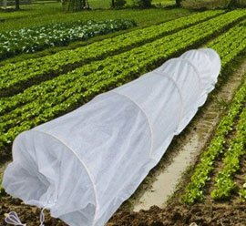 Non-Woven Crop Protection Fabric
