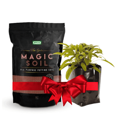 IFFCO Magic Soil - 2 Kg (All Purpose Potting Soil) + Plastic Poly Grow bags x 25
