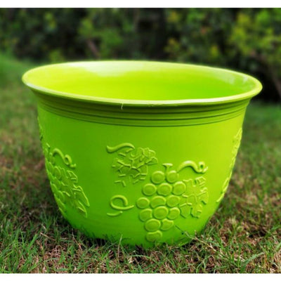 Leafy (8 inches) Fresh Flower Pots online