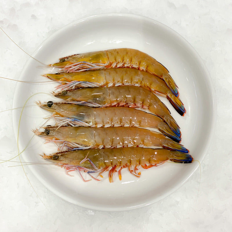 Wild Medium Green king Prawns Size 10/15